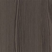 Anthracite Larch